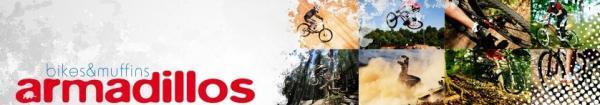armadillos-homepage.jpg